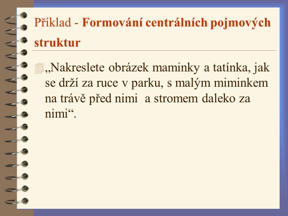 Příklad - Formování centrálních pojmových struktur