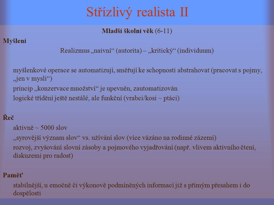 Střízlivý realista II