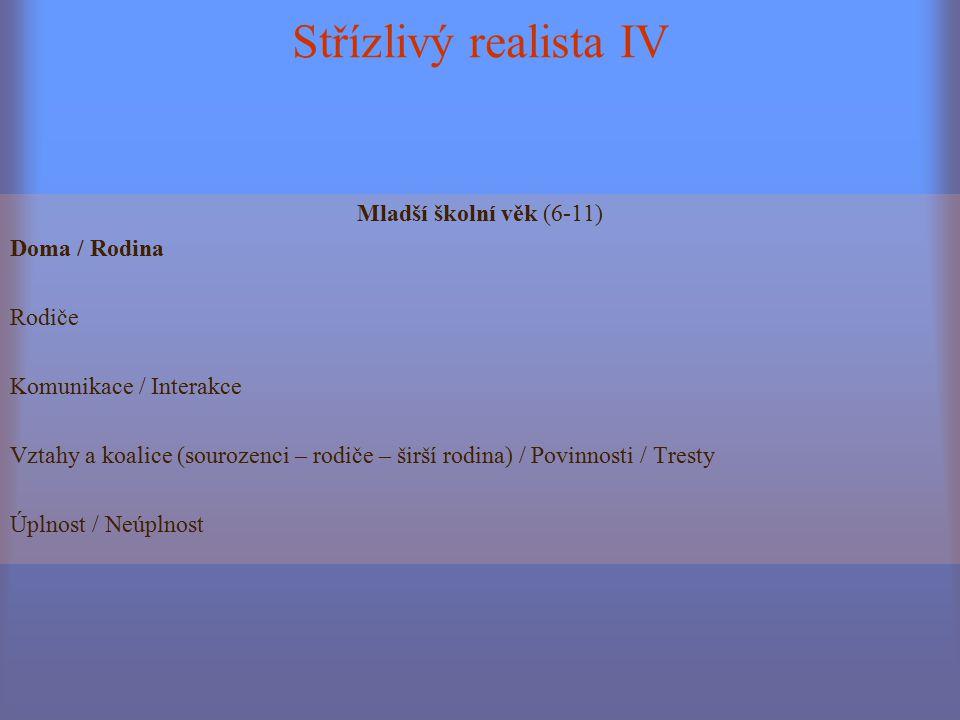Střízlivý realista IV