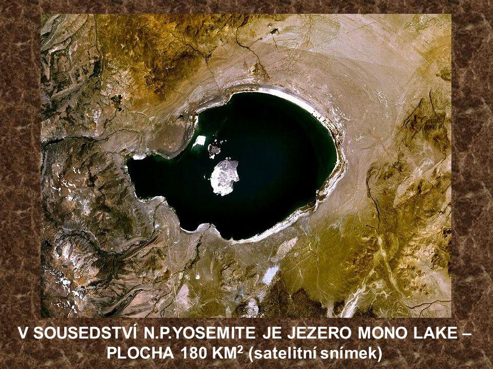 V SOUSEDSTVÍ N.P.YOSEMITE JE JEZERO MONO LAKE – PLOCHA 180 KM2 (satelitní snímek)