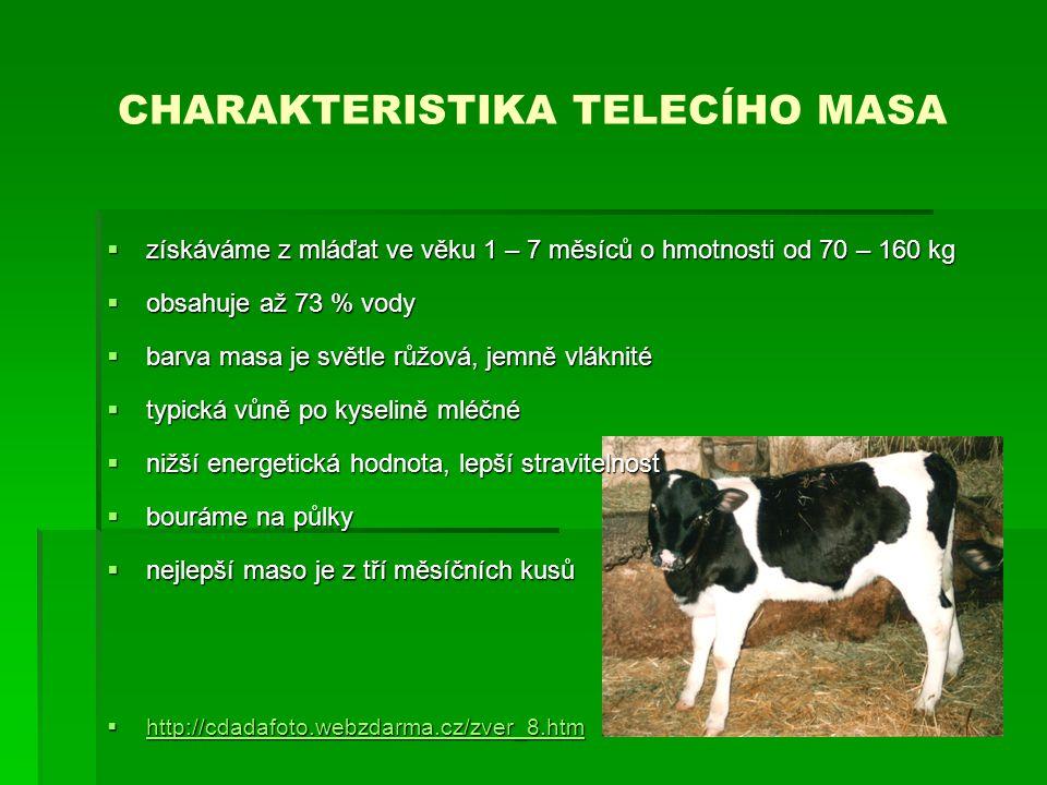 CHARAKTERISTIKA TELECÍHO MASA