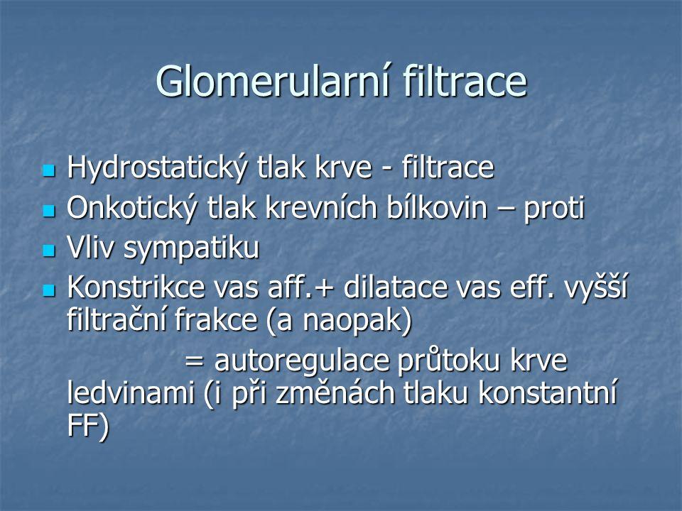 Glomerularní filtrace
