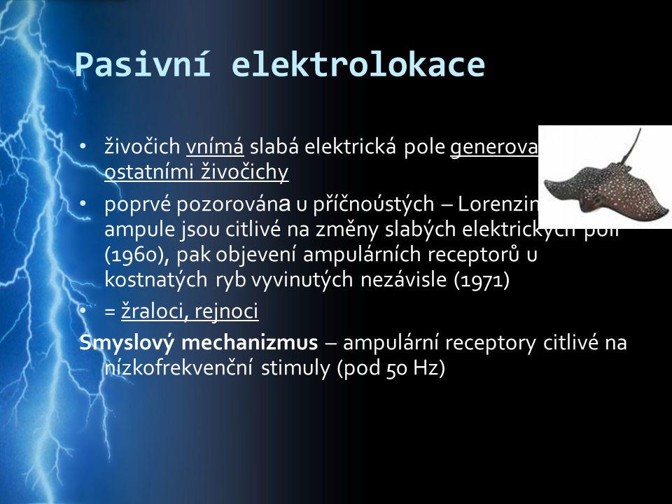 Pasivní elektrolokace
