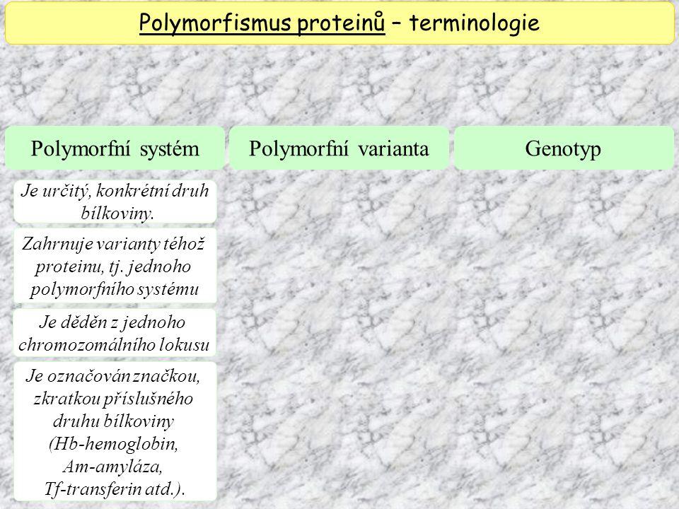 Polymorfismus proteinů – terminologie