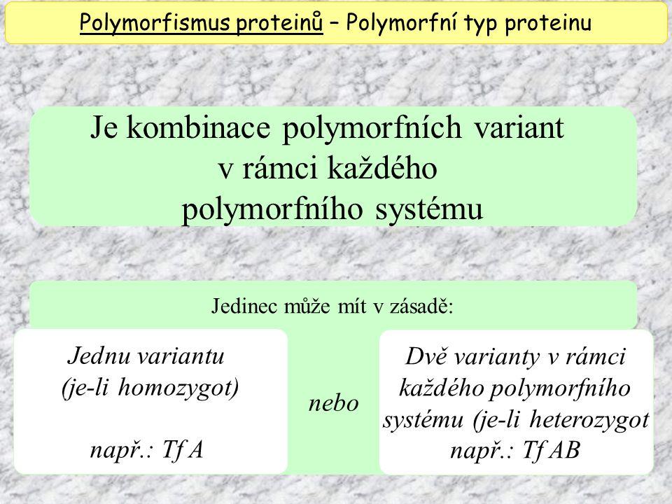 Je kombinace polymorfních variant v rámci každého polymorfního systému