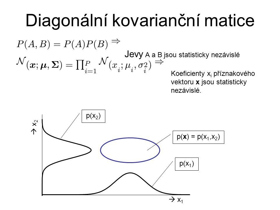 Diagonální kovarianční matice