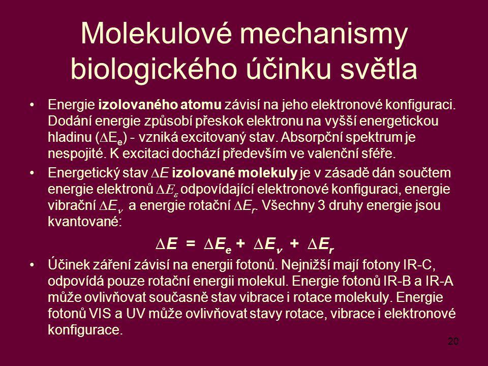Molekulové mechanismy biologického účinku světla