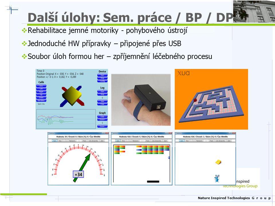 Další úlohy: Sem. práce / BP / DP