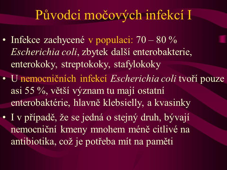 Původci močových infekcí I