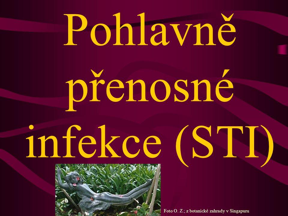 Pohlavně přenosné infekce (STI)