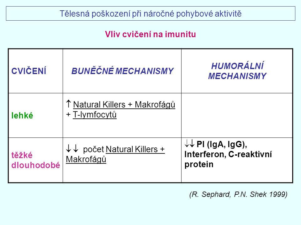 Vliv cvičení na imunitu
