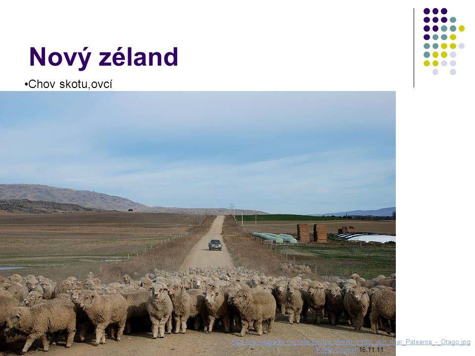 Nový zéland Chov skotu,ovcí