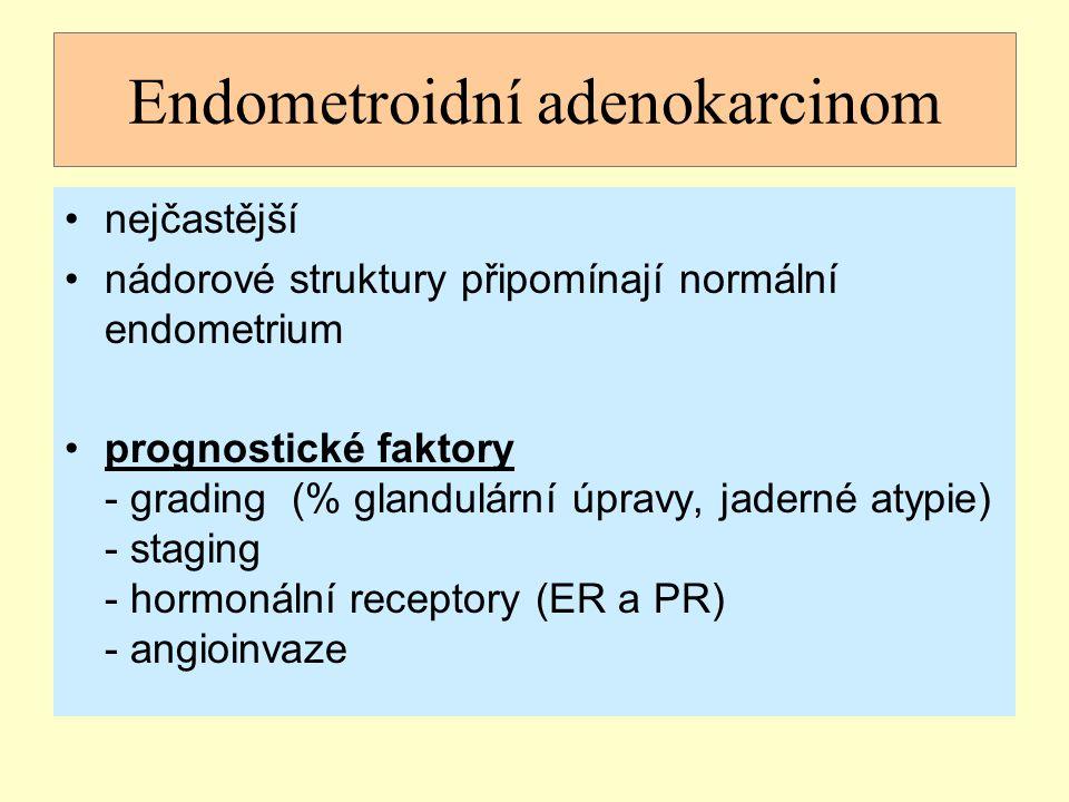 Endometroidní adenokarcinom