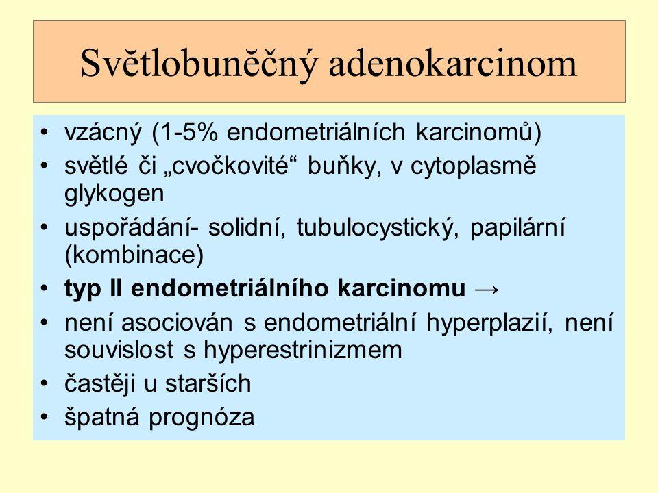 Svĕtlobunĕčný adenokarcinom