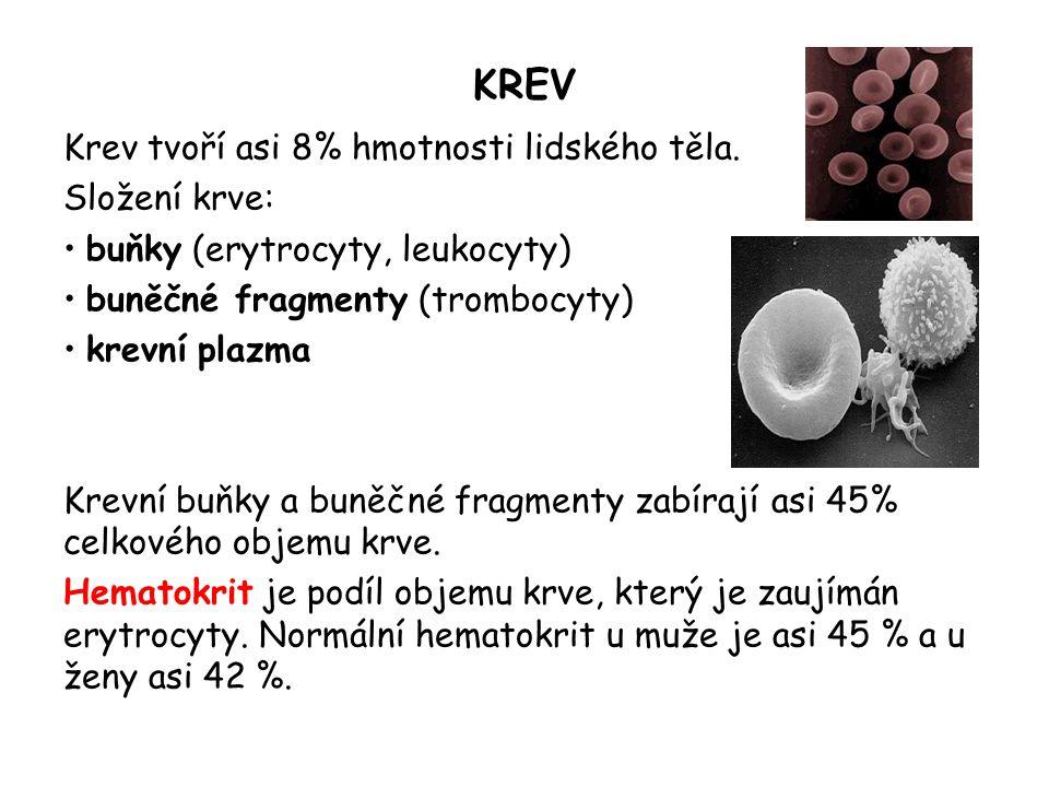 KREV Krev tvoří asi 8% hmotnosti lidského těla. Složení krve: