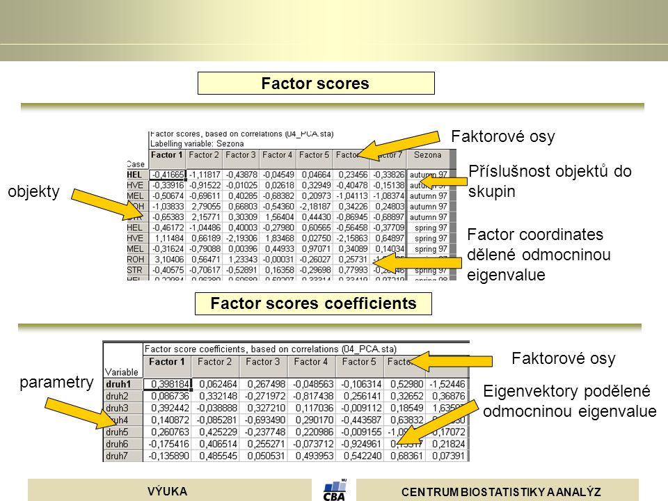 Factor scores coefficients
