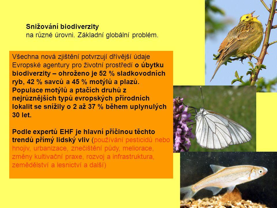 Snižování biodiverzity