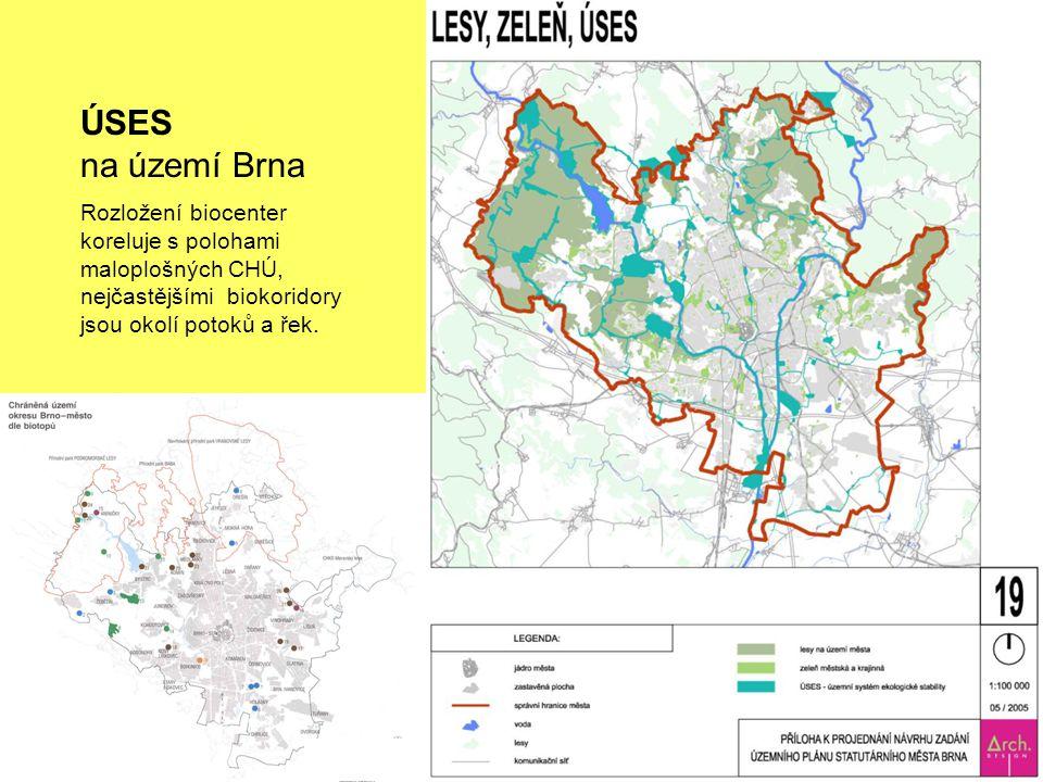 ÚSES na území Brna Rozložení biocenter koreluje s polohami maloplošných CHÚ, nejčastějšími biokoridory jsou okolí potoků a řek.