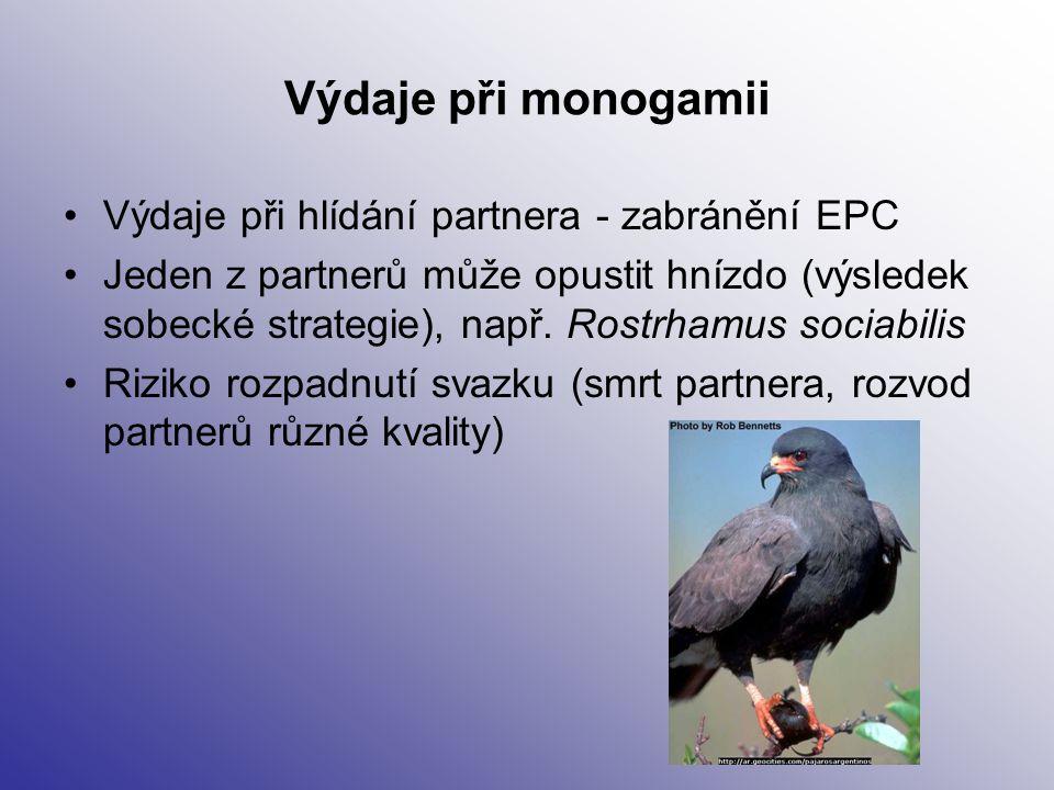 Výdaje při monogamii Výdaje při hlídání partnera - zabránění EPC