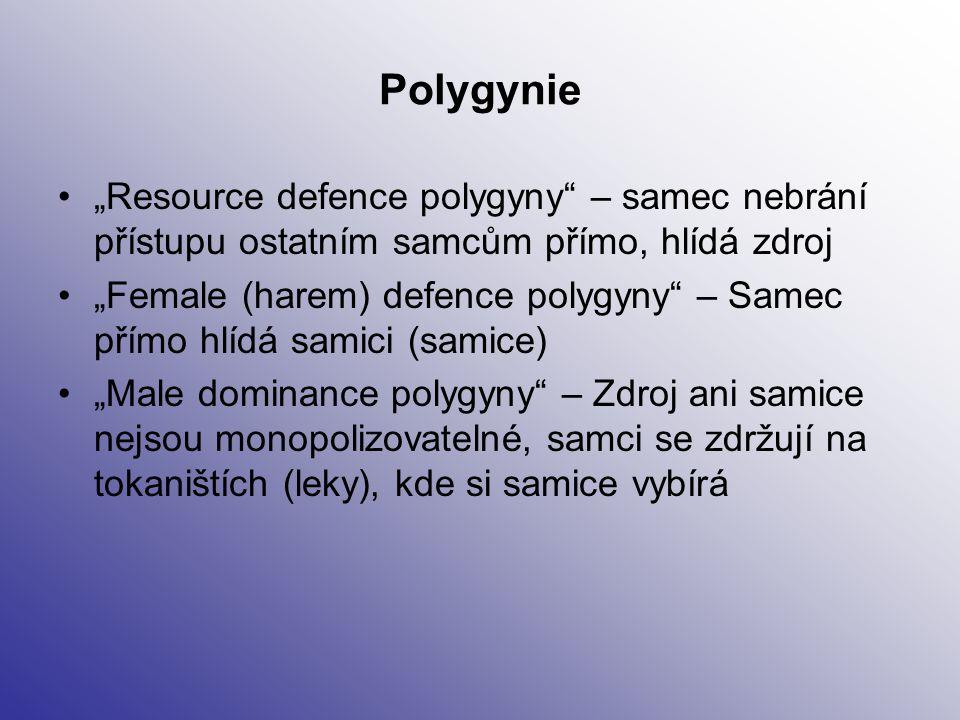 """Polygynie """"Resource defence polygyny – samec nebrání přístupu ostatním samcům přímo, hlídá zdroj."""