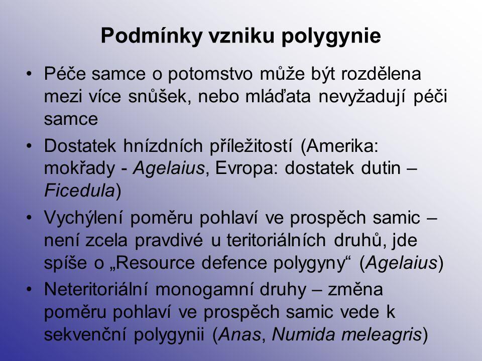 Podmínky vzniku polygynie