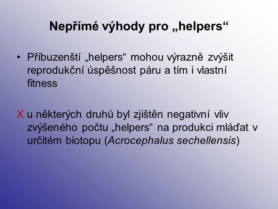 """Nepřímé výhody pro """"helpers"""