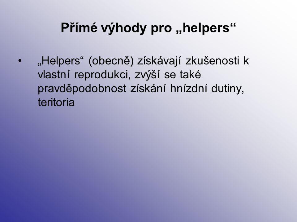 """Přímé výhody pro """"helpers"""