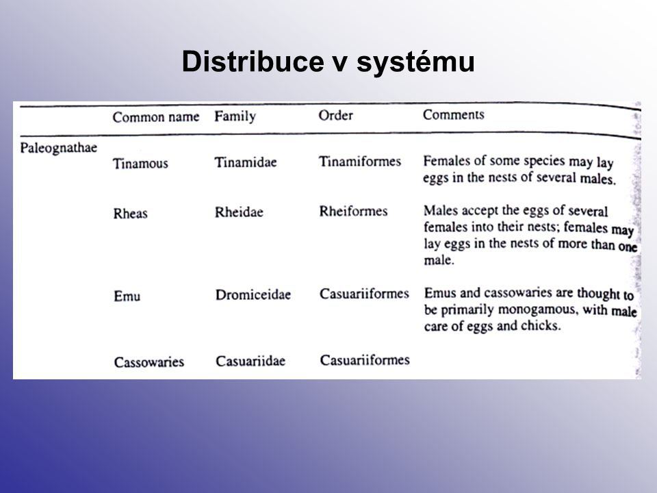 Distribuce v systému