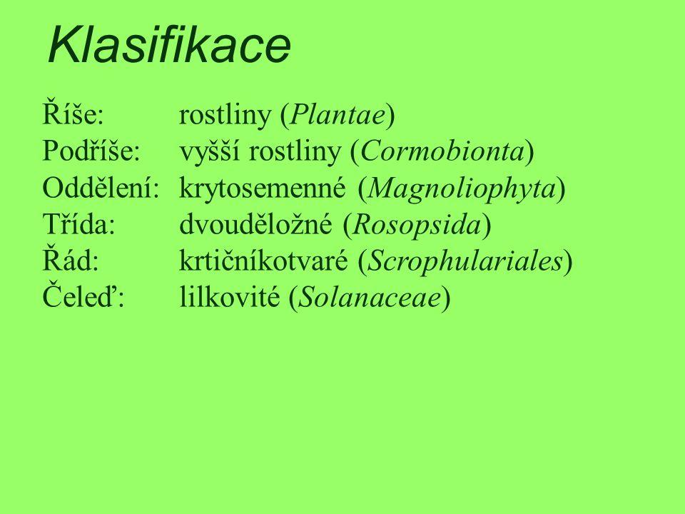 Klasifikace Říše: rostliny (Plantae)