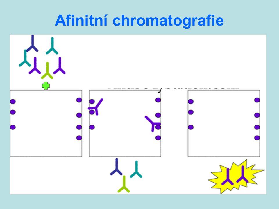 Afinitní chromatografie
