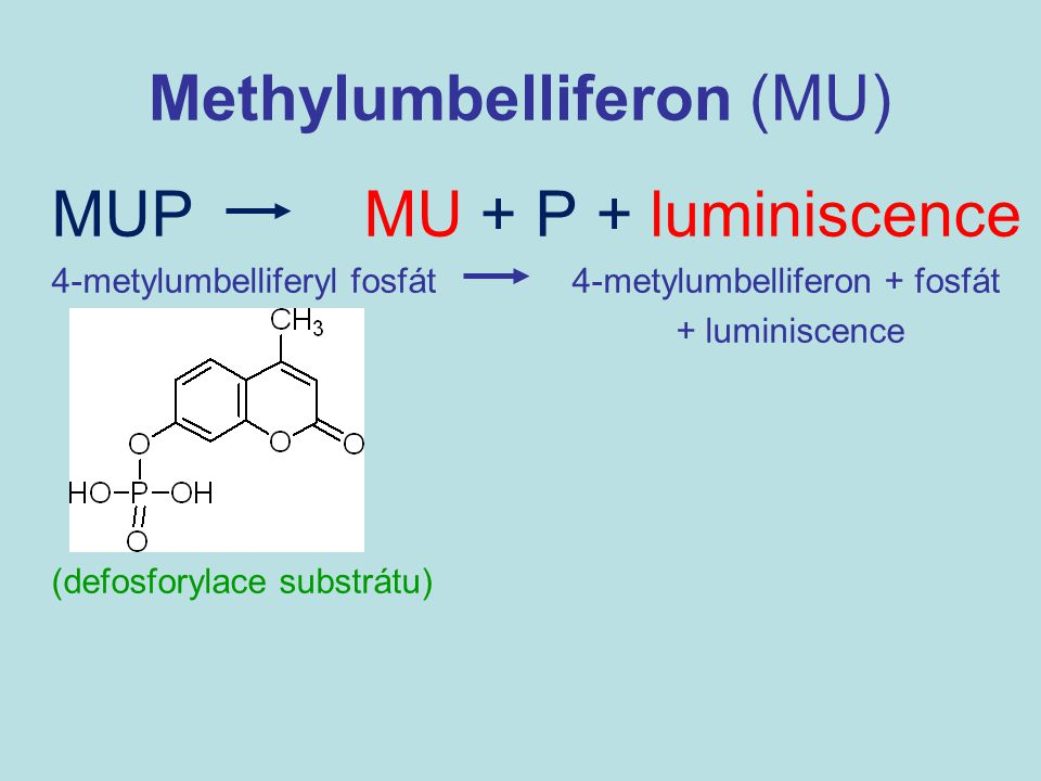 Methylumbelliferon (MU)