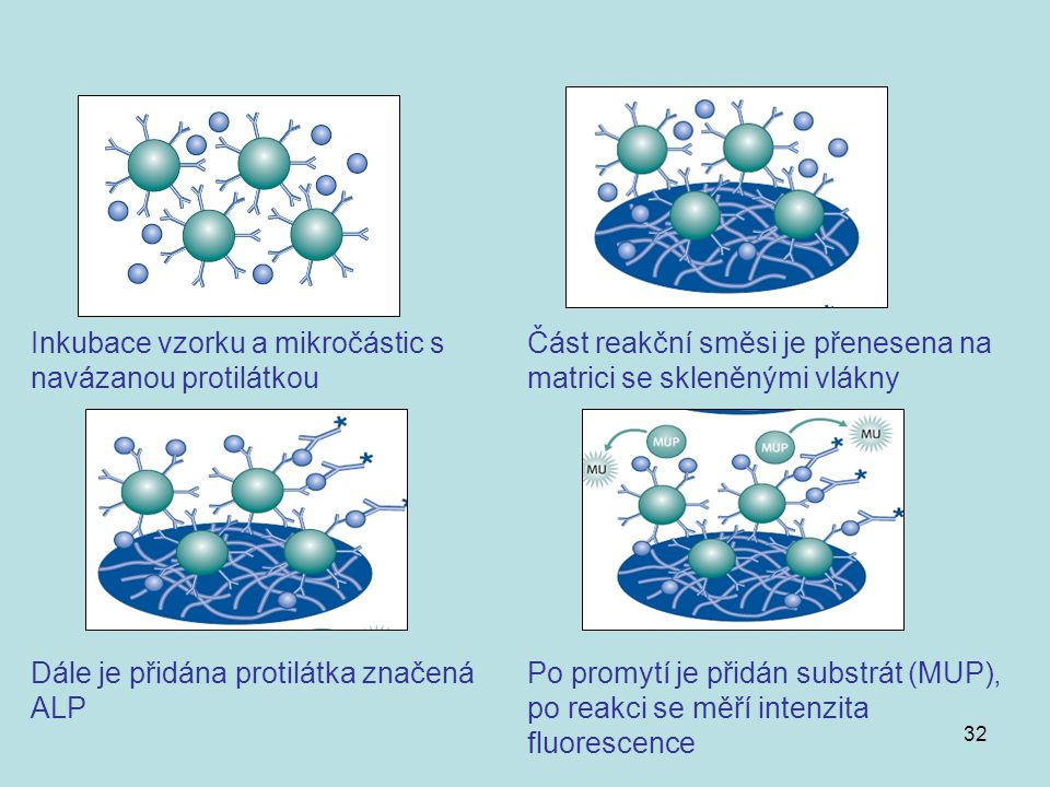 Inkubace vzorku a mikročástic s navázanou protilátkou