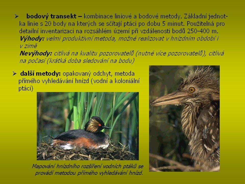 Mapování hnízdního rozšíření vodních ptáků se provádí metodou přímého vyhledávání hnízd.
