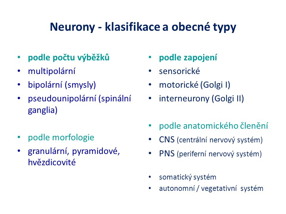 Neurony - klasifikace a obecné typy