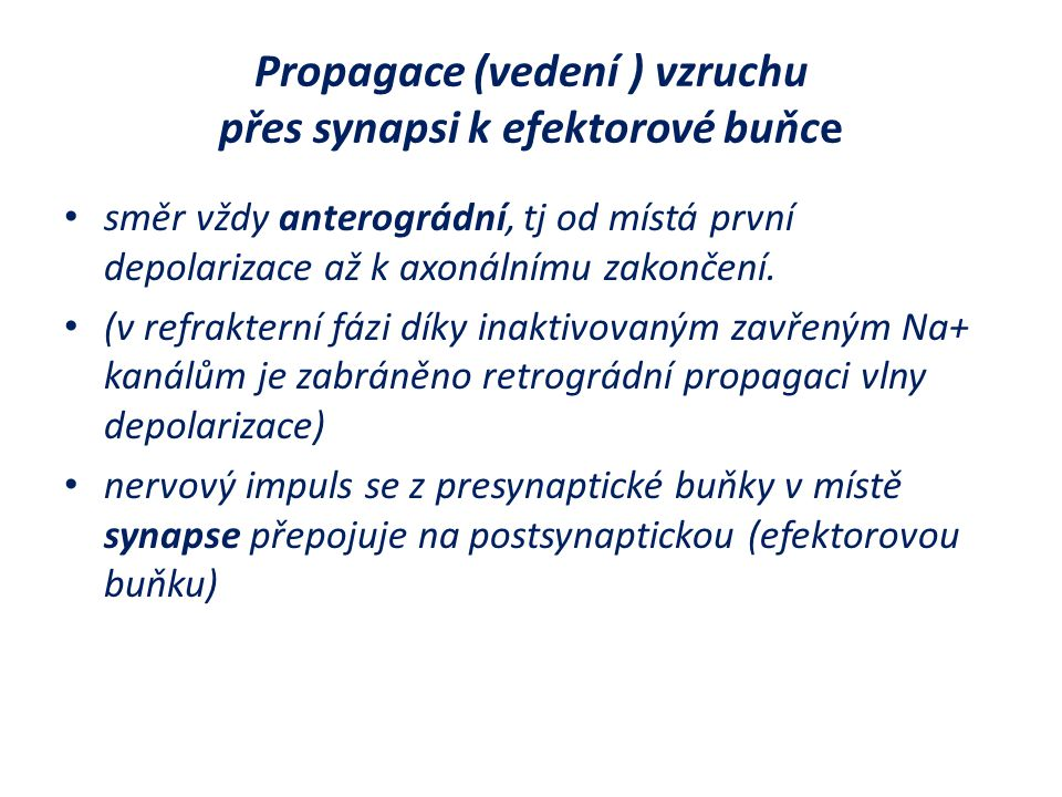 Propagace (vedení ) vzruchu přes synapsi k efektorové buňce