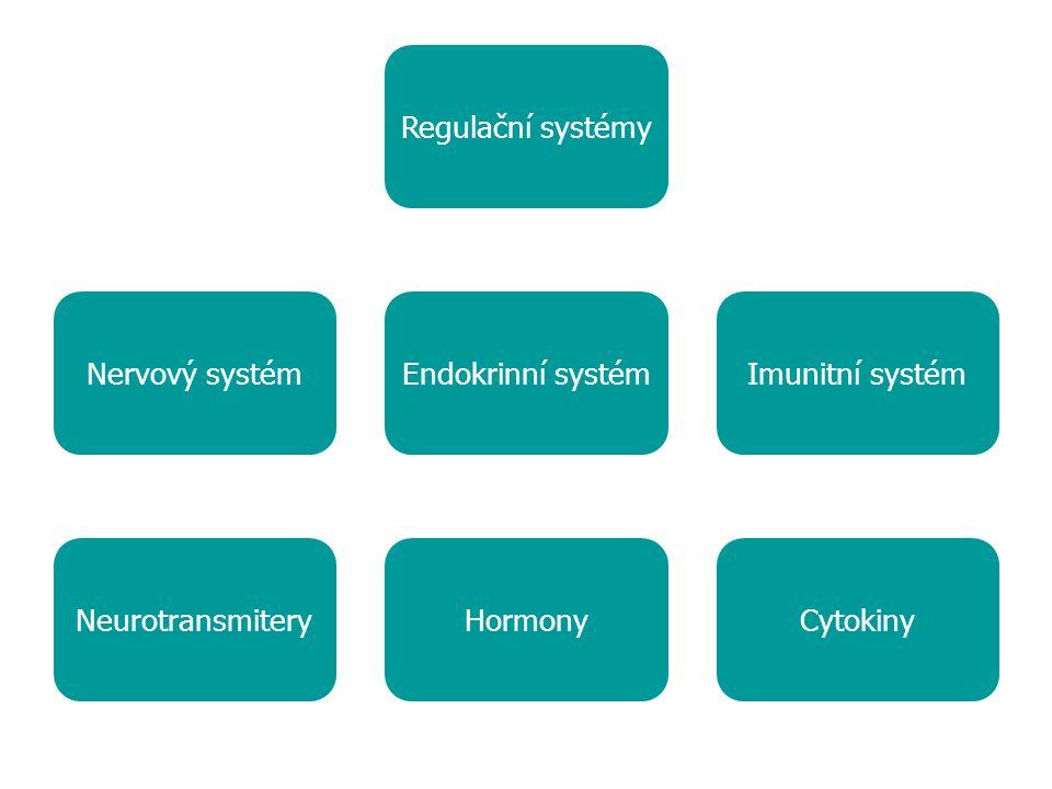 Regulační systémy Nervový systém. Endokrinní systém.