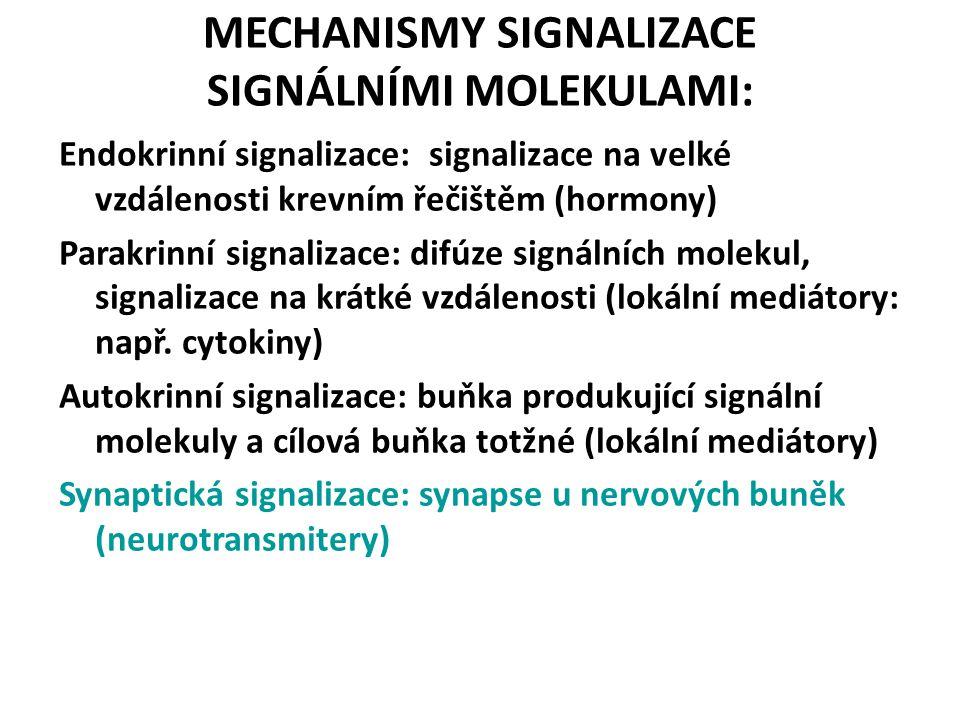 MECHANISMY SIGNALIZACE SIGNÁLNÍMI MOLEKULAMI:
