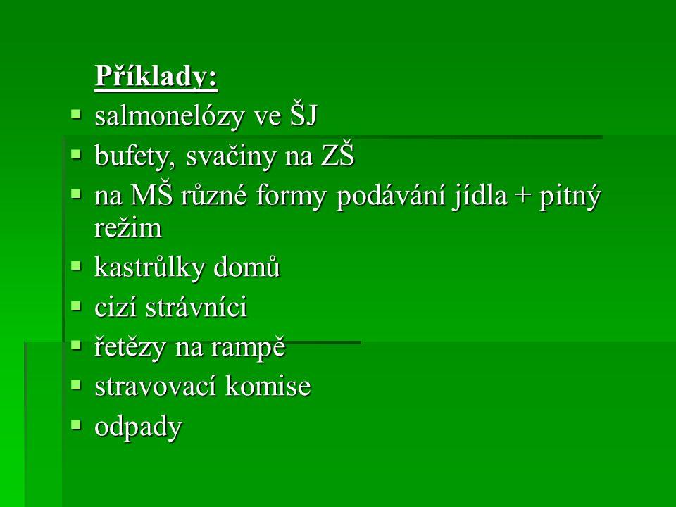 Příklady: salmonelózy ve ŠJ. bufety, svačiny na ZŠ. na MŠ různé formy podávání jídla + pitný režim.