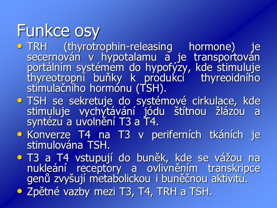 Funkce osy