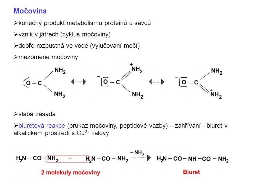 Močovina konečný produkt metabolismu proteinů u savců