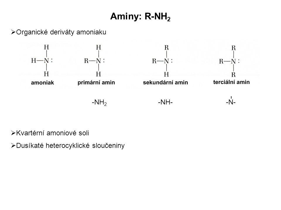 Aminy: R-NH2 Organické deriváty amoniaku Kvartérní amoniové soli