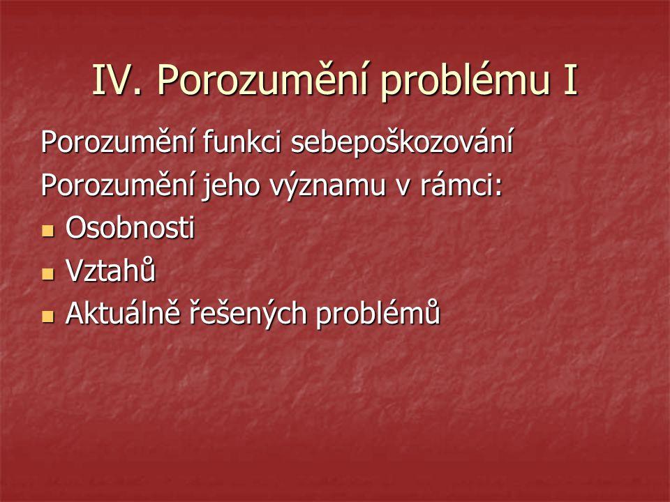 IV. Porozumění problému I