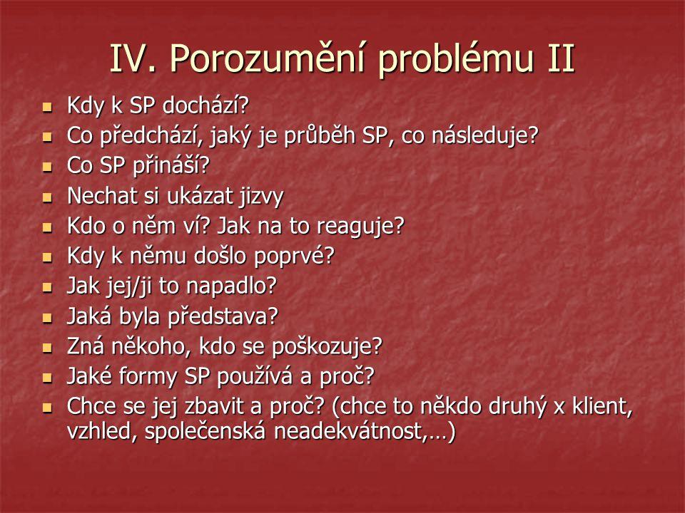 IV. Porozumění problému II