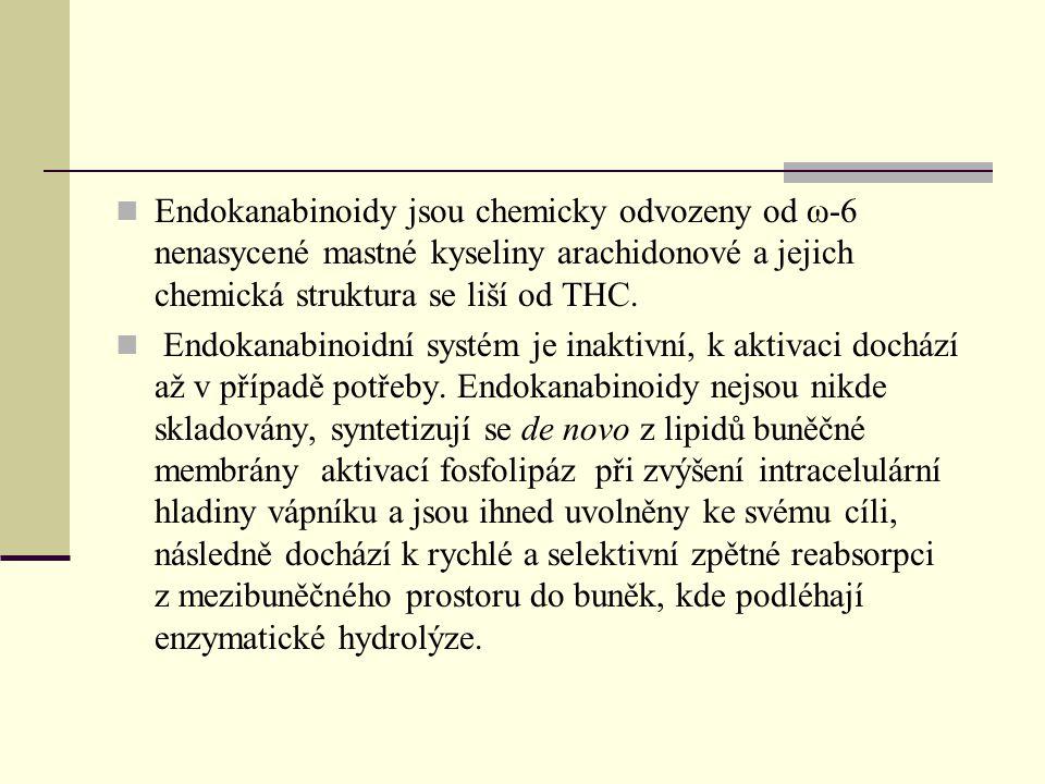 Endokanabinoidy jsou chemicky odvozeny od ω-6 nenasycené mastné kyseliny arachidonové a jejich chemická struktura se liší od THC.