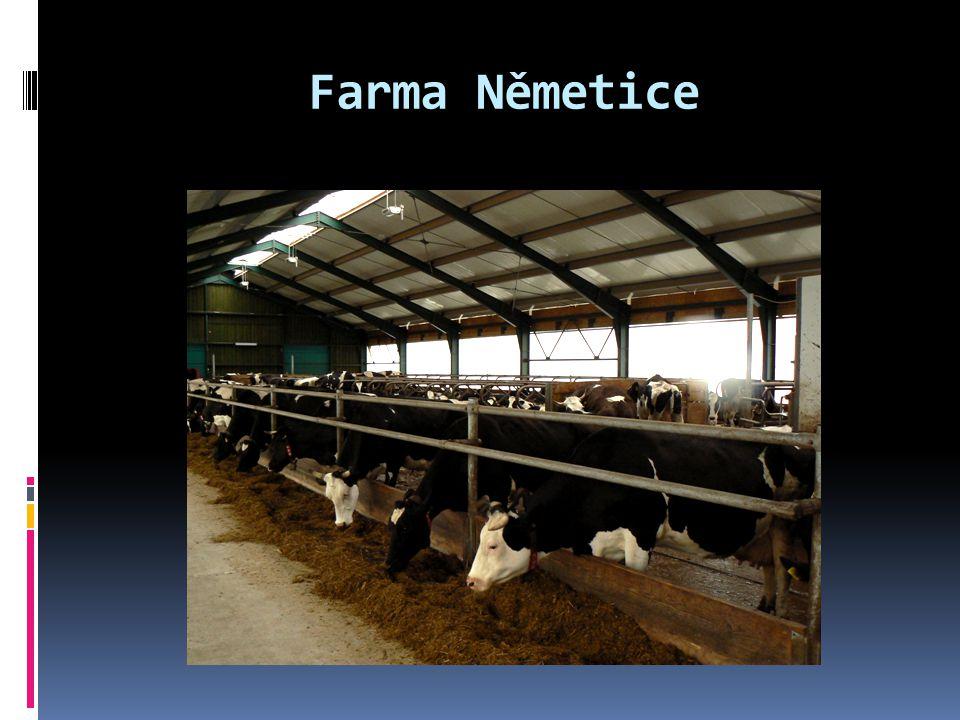 Farma Němetice