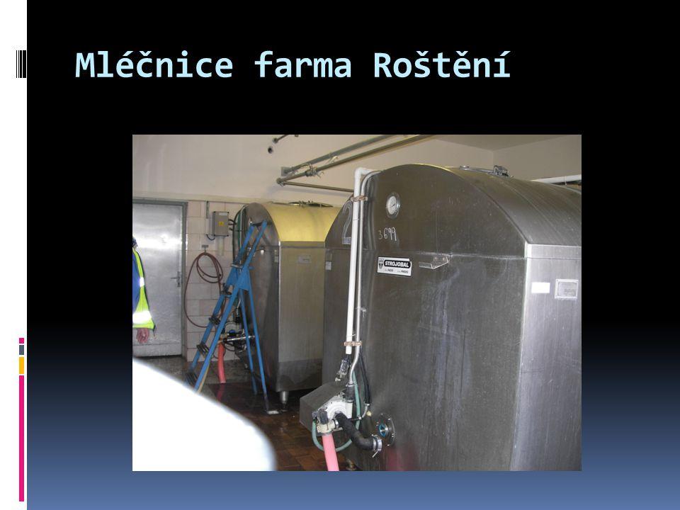 Mléčnice farma Roštění