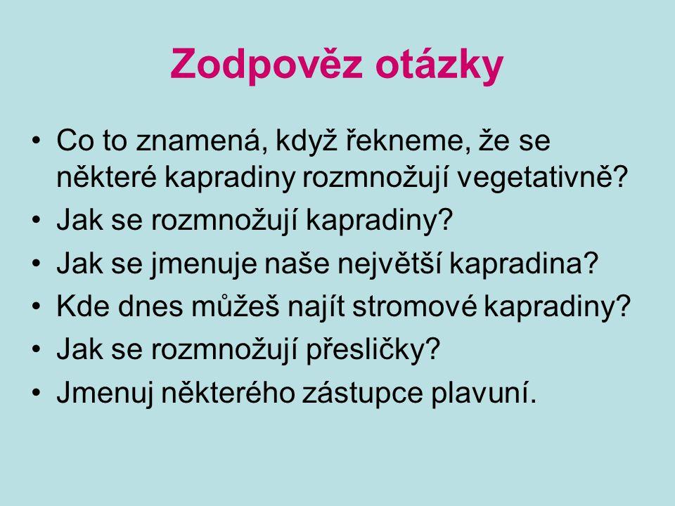 Zodpověz otázky Co to znamená, když řekneme, že se některé kapradiny rozmnožují vegetativně Jak se rozmnožují kapradiny