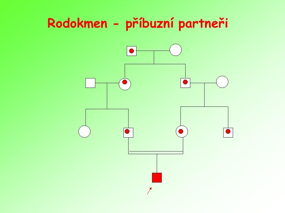 Rodokmen - příbuzní partneři