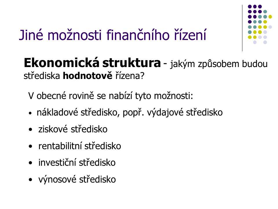Jiné možnosti finančního řízení