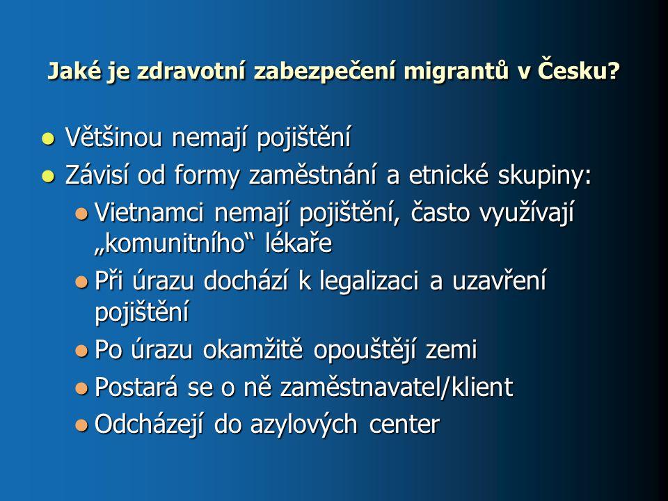 Jaké je zdravotní zabezpečení migrantů v Česku